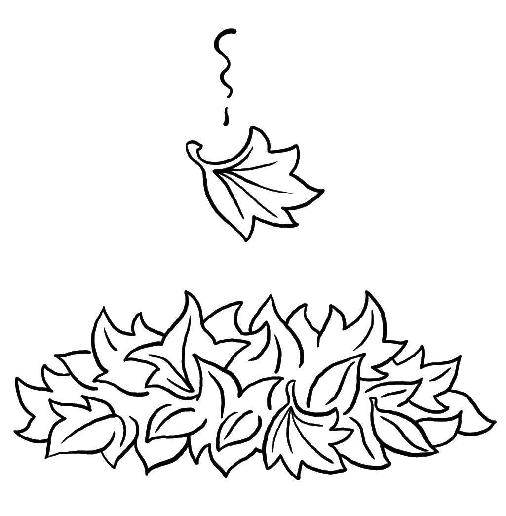 Раскраска листья Скачать майнкрафт, воин.  Распечатать ,майнкрафт,