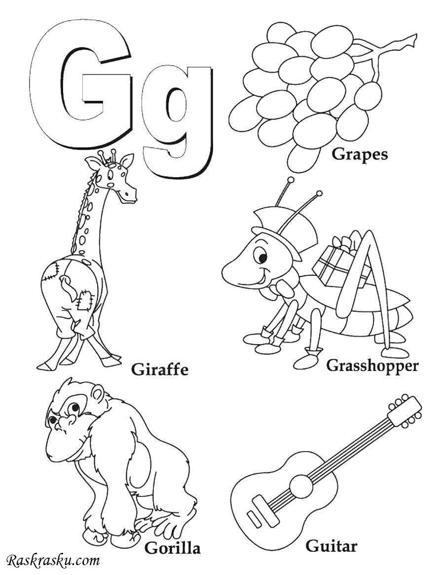 Раскраска Английские слова на g Скачать Английские слова, G.  Распечатать ,Английский,