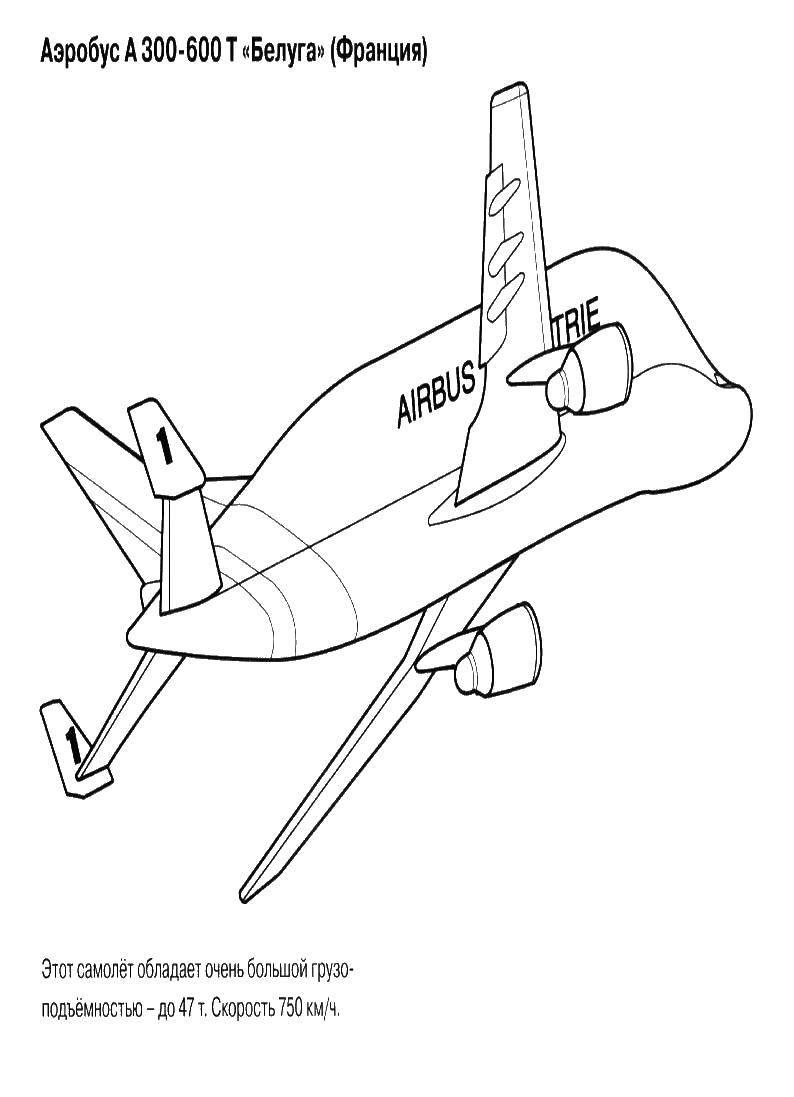Раскраска самолеты Скачать ,Персонаж из мультфильма, Winx,.  Распечатать