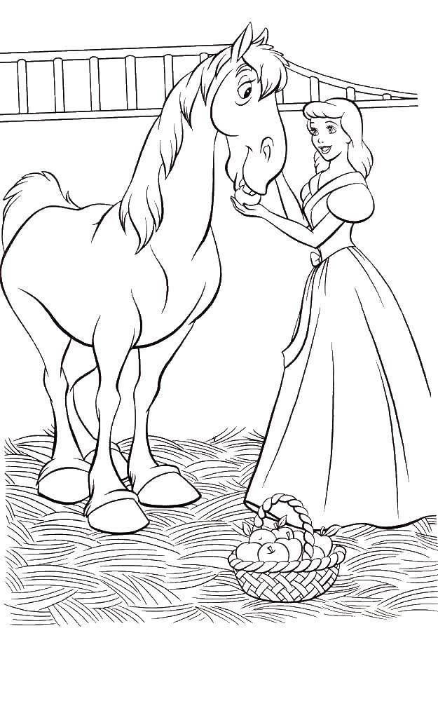 Раскраска Золушка кормит лошадку Скачать Золушка, лошадь.  Распечатать ,золушка и принц,