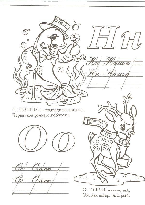 Раскраска Н налим, о олень Скачать Алфавит, буквы, слова.  Распечатать ,азбука,