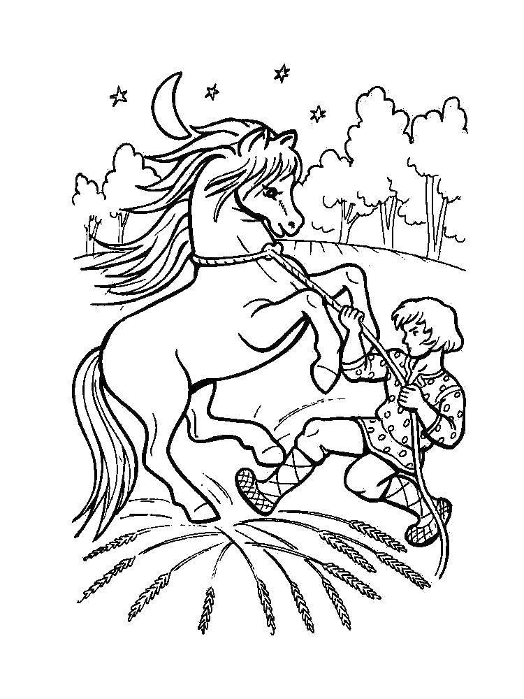 Раскраска Молодец седлает коня Скачать сказка, конь, молодец.  Распечатать ,сказка о царе салтане,