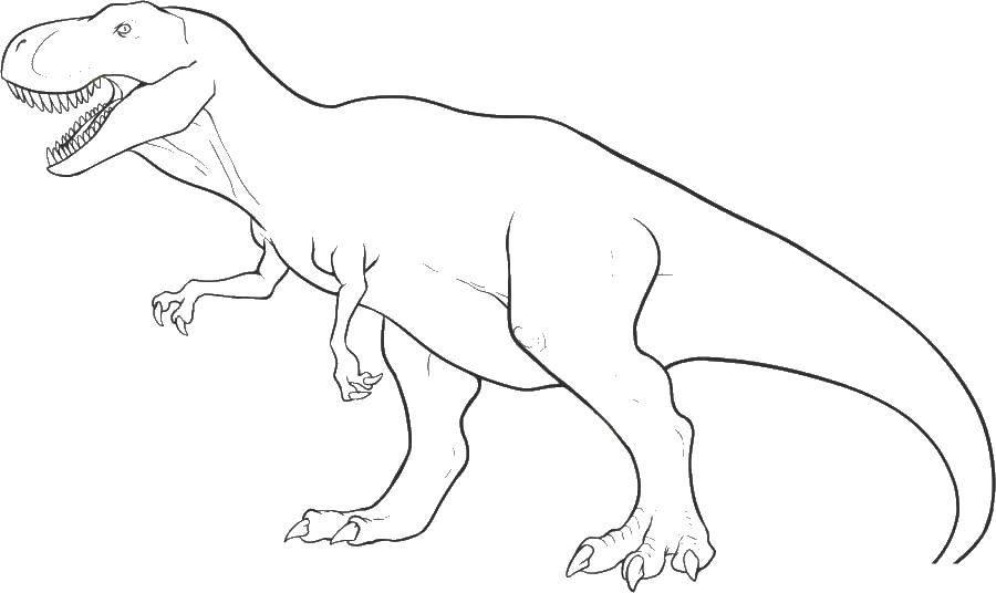 Раскраска Тиранозавр динозавр мелового периода Скачать Тиранозавр, динозавр.  Распечатать ,парк юрского периода,