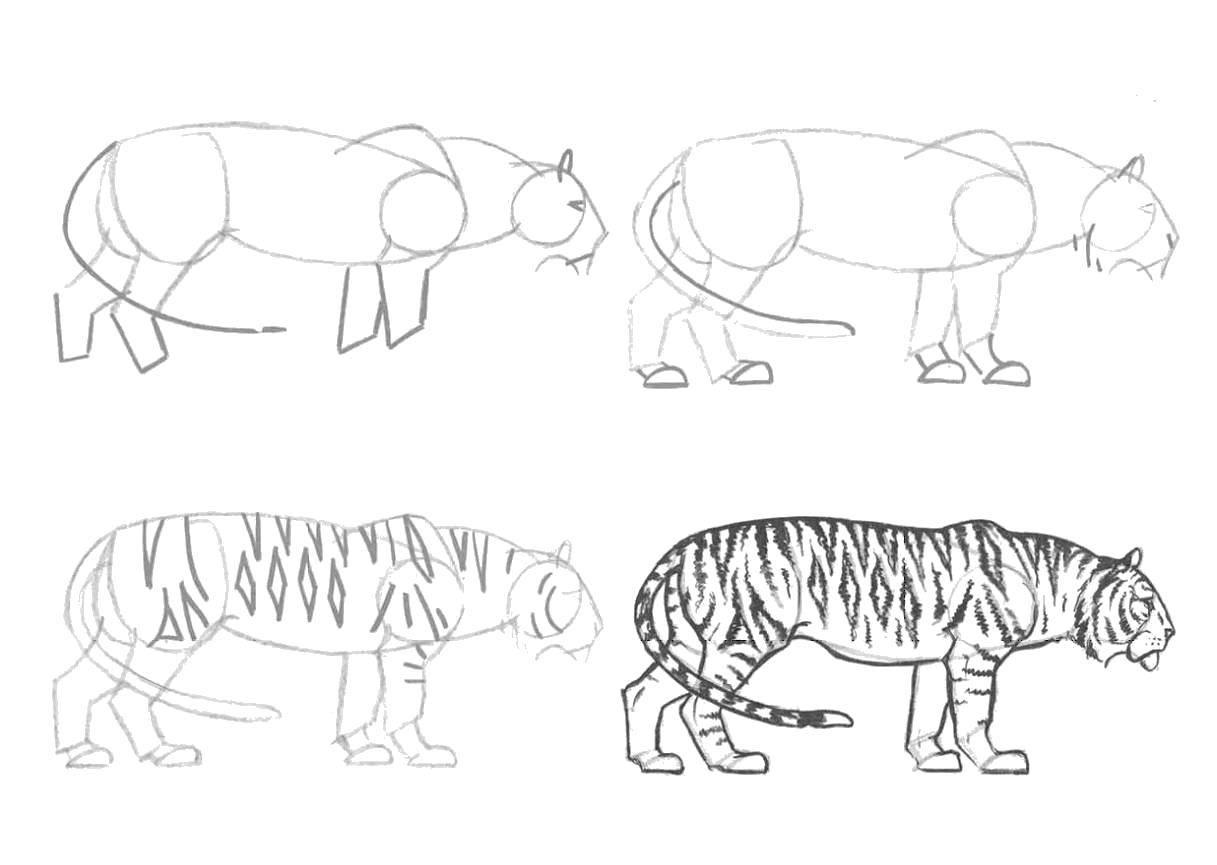 Раскраска как нарисовать поэтапно карандашом Скачать мультфильмы, черепашки ниндзя.  Распечатать ,черепашки ниндзя,