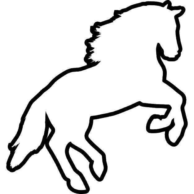 Раскраска Контур коня Скачать контуры, лошади, конь.  Распечатать ,контуры лошади,