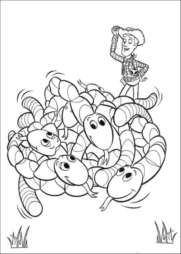 Раскраска Шериф вуди с червячками. Скачать Персонаж из мультфильма, История игрушек .  Распечатать ,Детские игрушки,