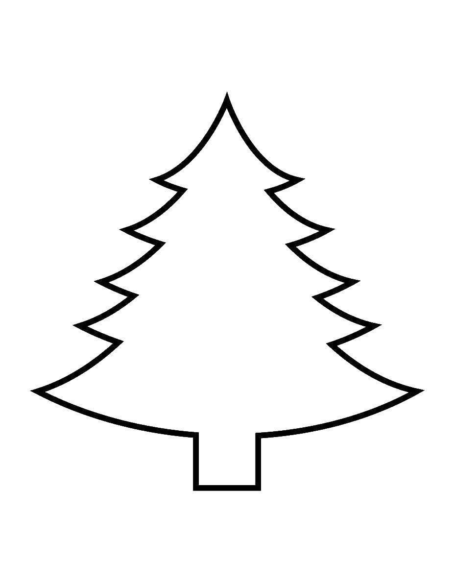 Раскраска Контур елки Скачать контур дерева, контур елки.  Распечатать ,Контур дерева,