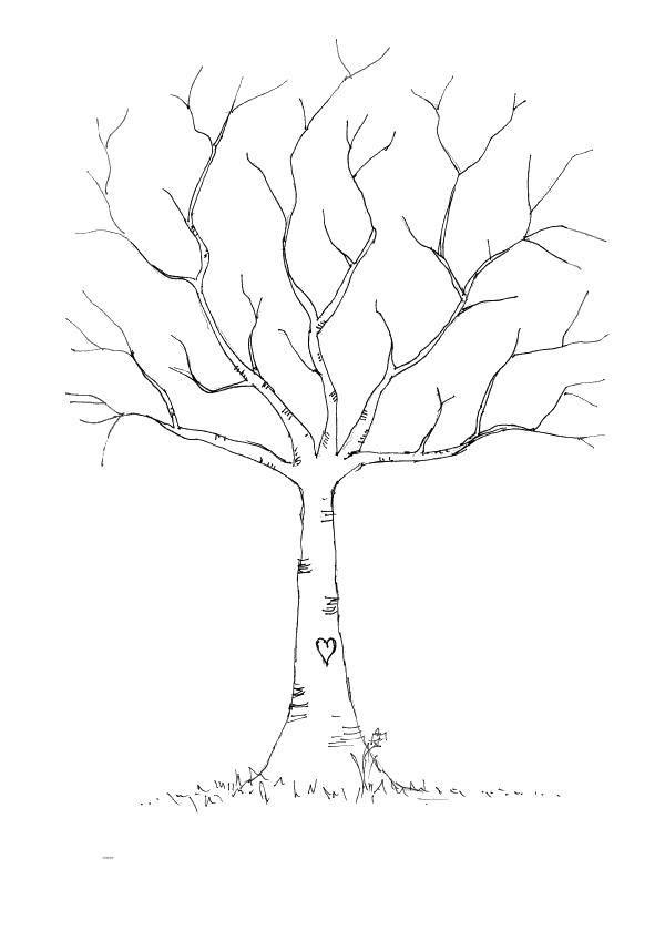 Раскраска Рисунок на деревце Скачать Деревья, лист.  Распечатать ,дерево,