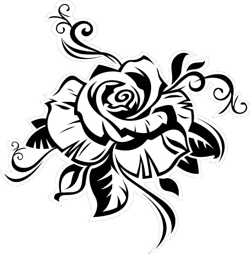 Раскраска Тату роза Скачать роза, контуры.  Распечатать ,Контуры розы,