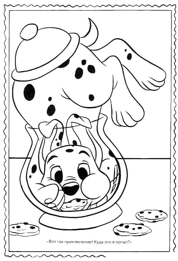Раскраска 101 далматинец Скачать соник, еж.  Распечатать ,Персонаж из игры,