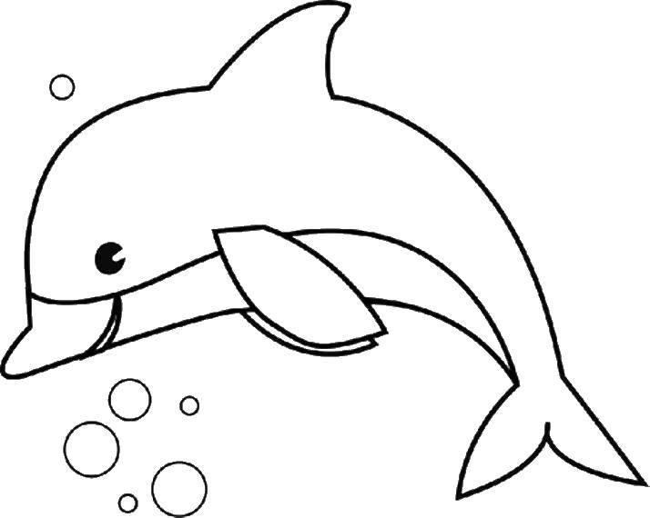 Раскраска дельфин Скачать ,атомы, молекулы,.  Распечатать