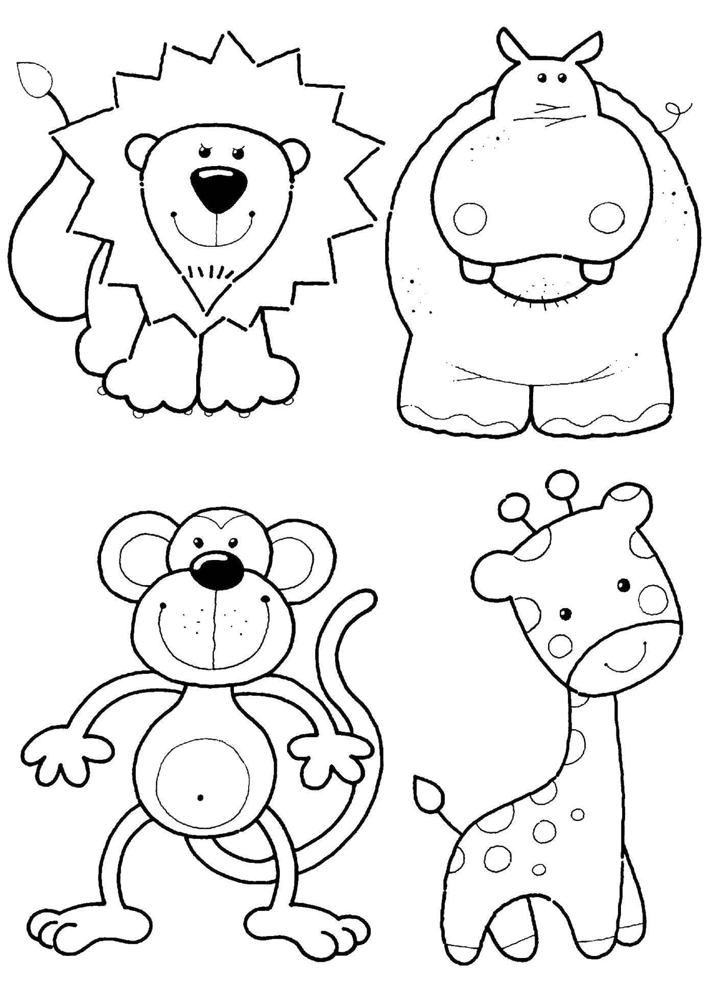 Раскраска Зверушки: львенок, бегемот, обезьяна, жираф Скачать животные, лев, бегемот, обезьяна, жираф.  Распечатать ,раскраски для маленьких,