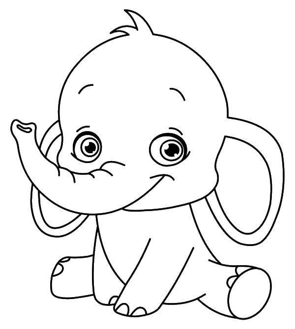 Раскраска Милый слоник Скачать животные, слоник, слон..  Распечатать ,Животные,