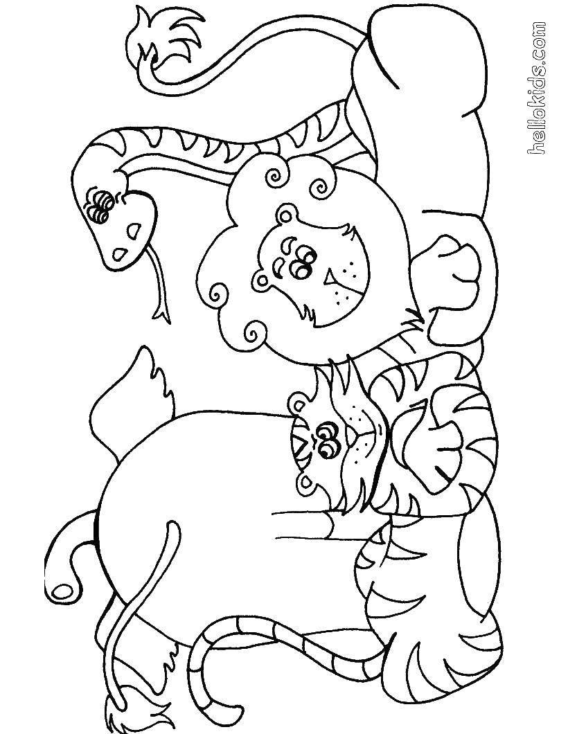 Раскраска Животный мир Скачать тигр, слон, лев, змея.  Распечатать ,Дикие животные,