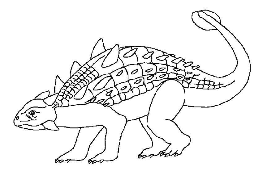 Раскраска Динозавр анкилозавр Скачать динозавр, анкилозавр.  Распечатать ,динозавр,