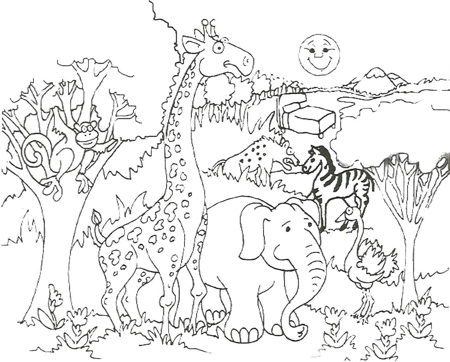 Раскраска зоопарк Скачать герой игр.  Распечатать ,Компьютерные игры,