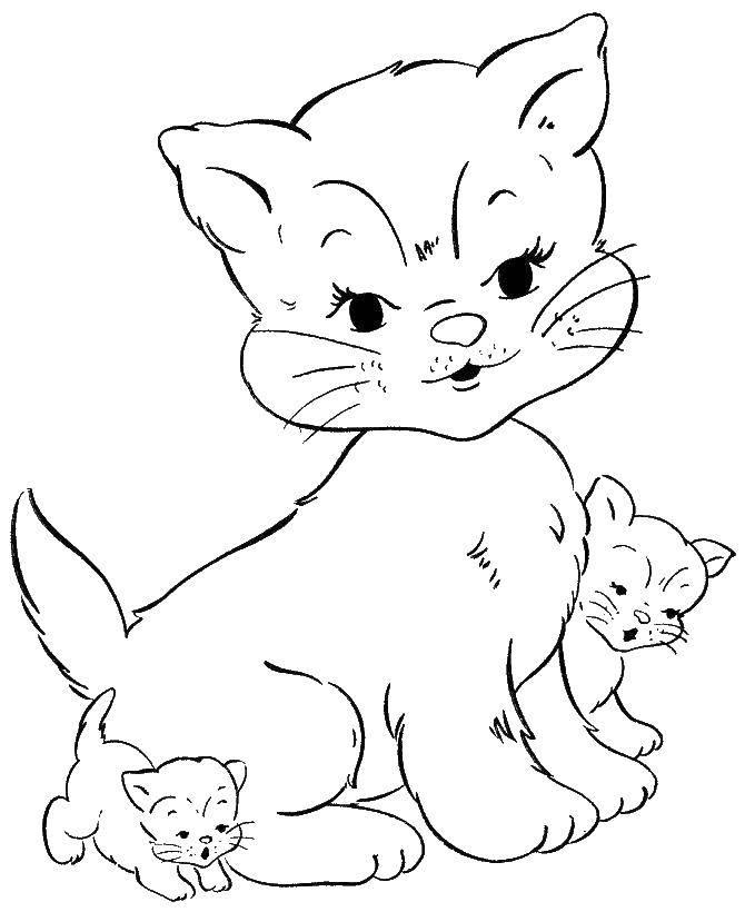 Раскраска Коты и котята Скачать Музыка, инструмент, музыкант, ноты.  Распечатать ,музыка,