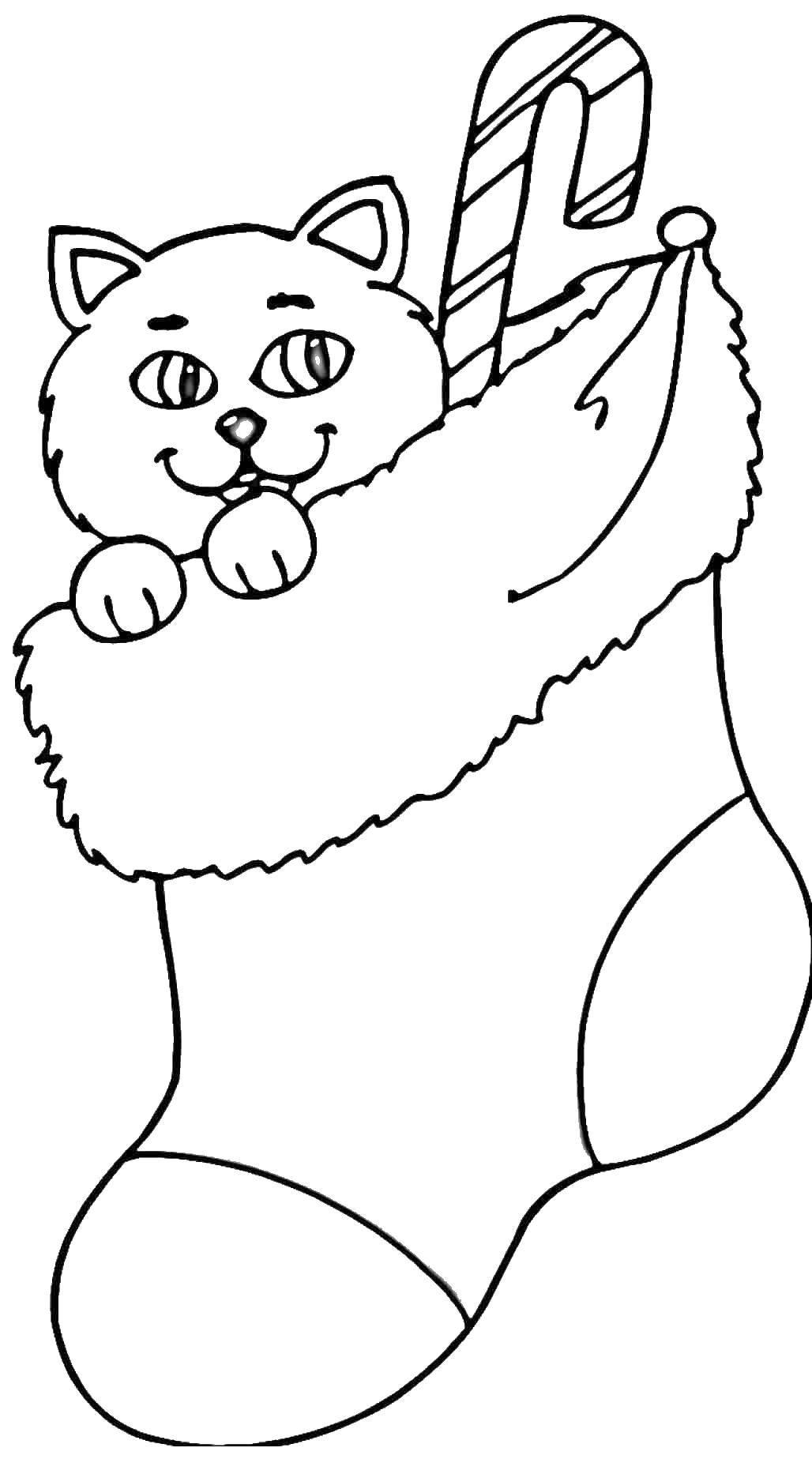 Раскраска Котик в носочке Скачать рождество, носочек, котик.  Распечатать ,Рождество,