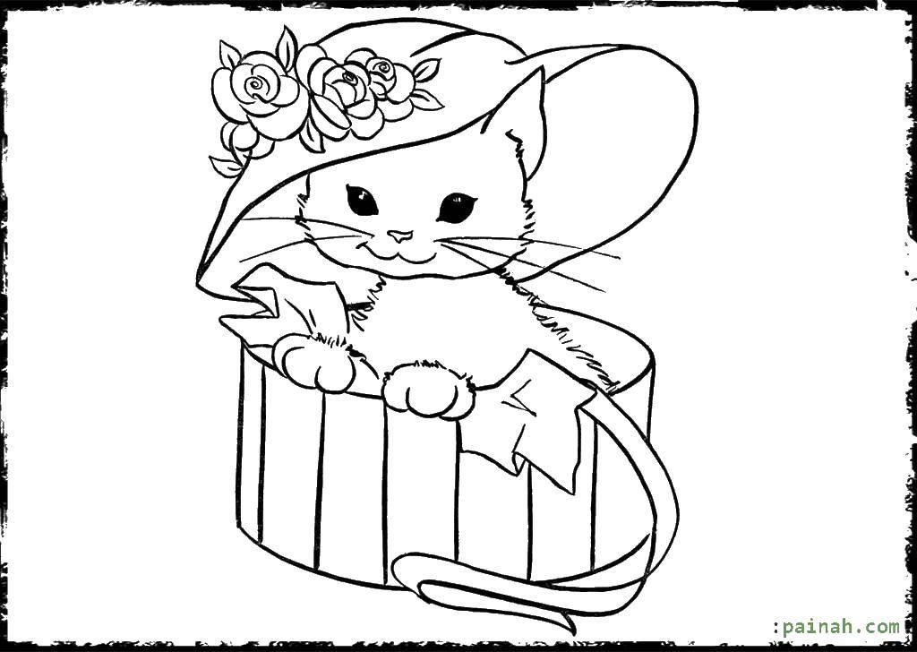 Раскраска Коты и котята Скачать Драгоценности.  Распечатать ,кольцо,