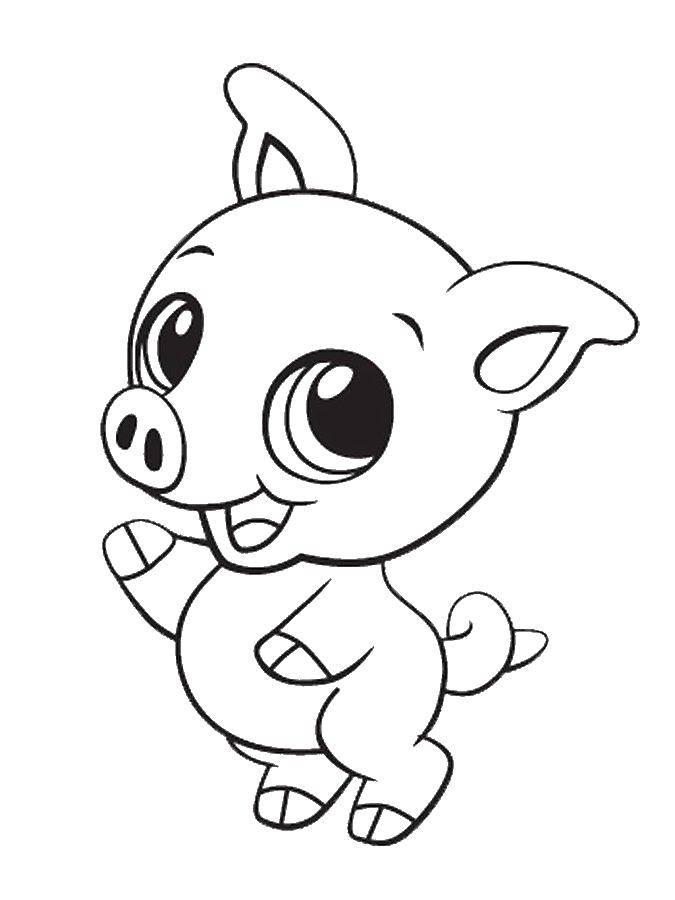 Раскраска Большеглазый поросёнок Скачать Животные, свинка.  Распечатать ,животные,