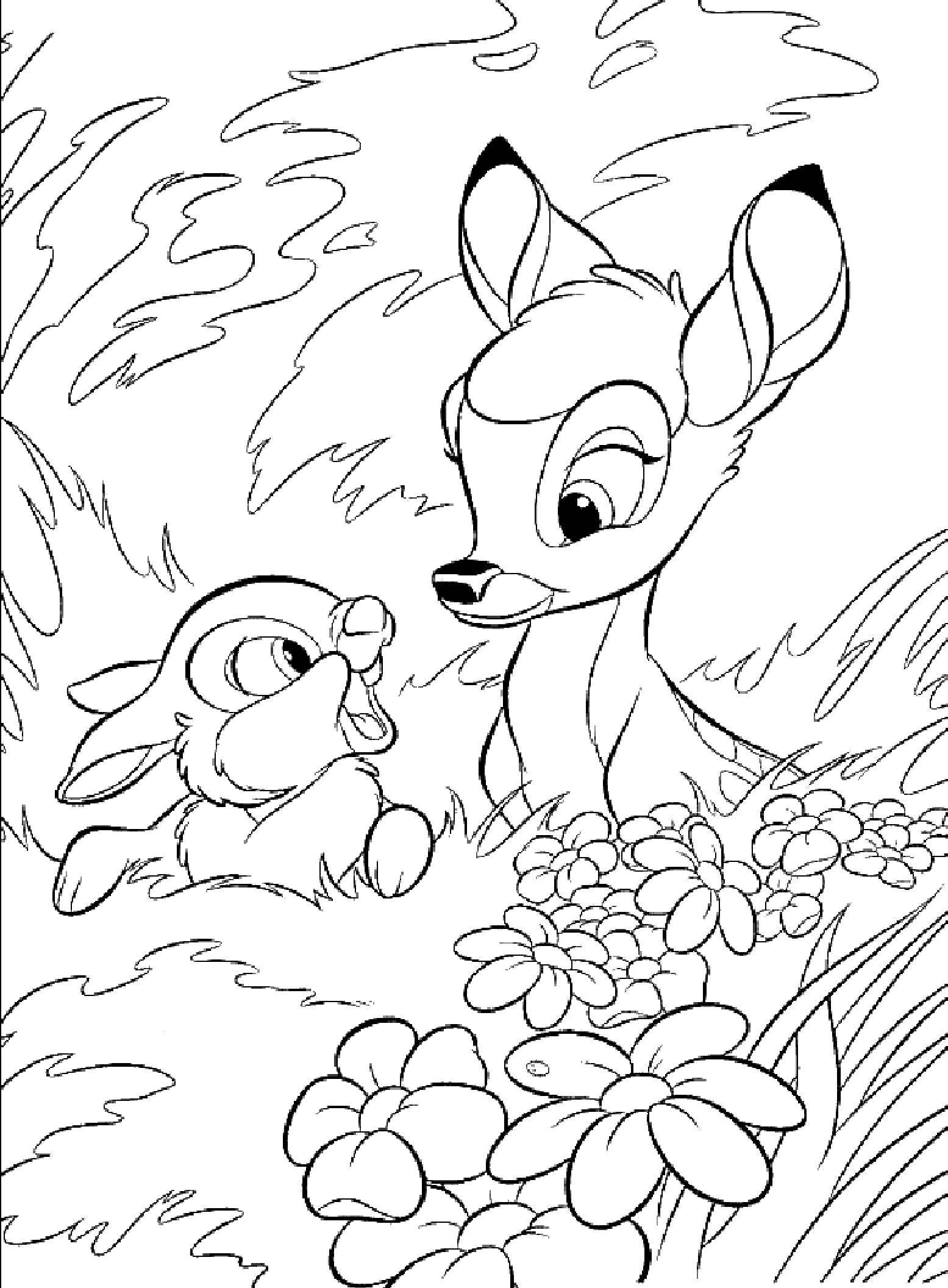 Раскраска Диснеевские мультфильмы Скачать животные, поросенок, свинка.  Распечатать ,животные,