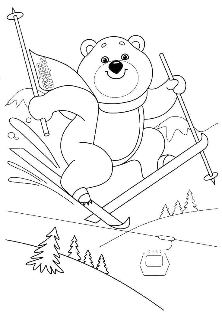 Раскраска Олимпийский мишка на лыжах Скачать мишка, игры, лыжи.  Распечатать ,олимпийские игры,