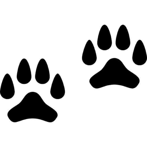 Раскраска Следы собаки Скачать следы, собака, лапы.  Распечатать ,Следы животных,