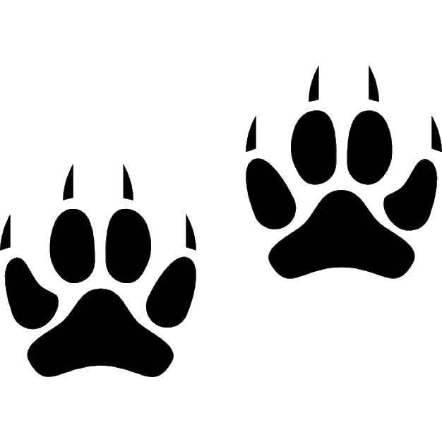 Раскраска Следы животных шаблоны Скачать следы, животные, шаблоны.  Распечатать ,Следы животных,