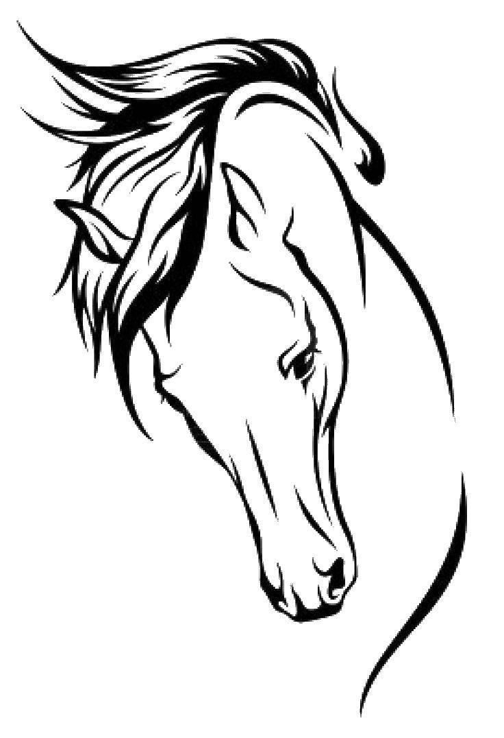 Раскраска лошади Скачать ,Подводный мир,.  Распечатать