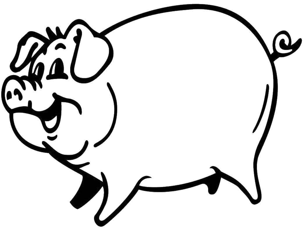 Раскраска Закрученный хвостик хрюши Скачать Животные, свинка.  Распечатать ,Животные,