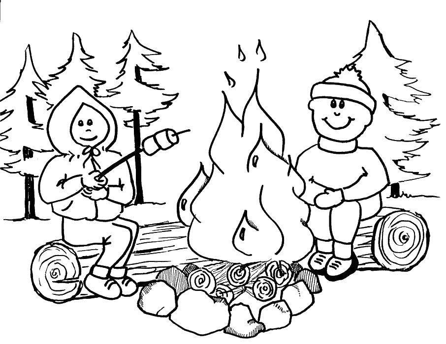 Раскраска Жарим зефир в походе Скачать Отдых, дети, лес, веселье.  Распечатать ,Отдых на природе,