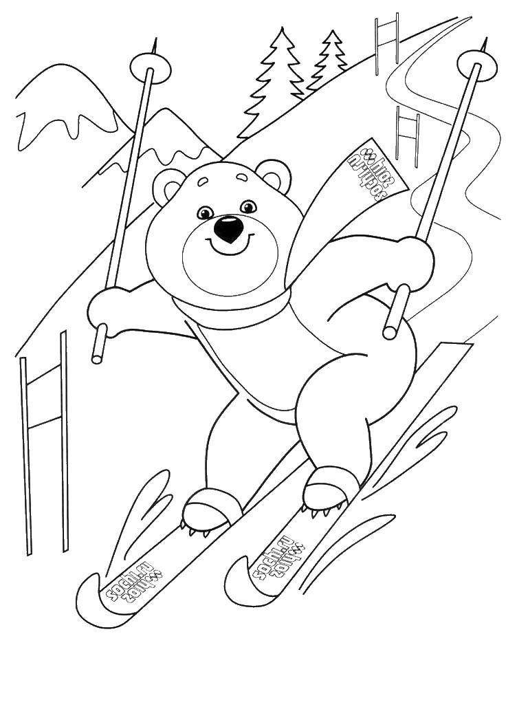Раскраска Олимпийский мишка катается на лыжах Скачать мишка, лыжи, снег.  Распечатать ,олимпийские игры,