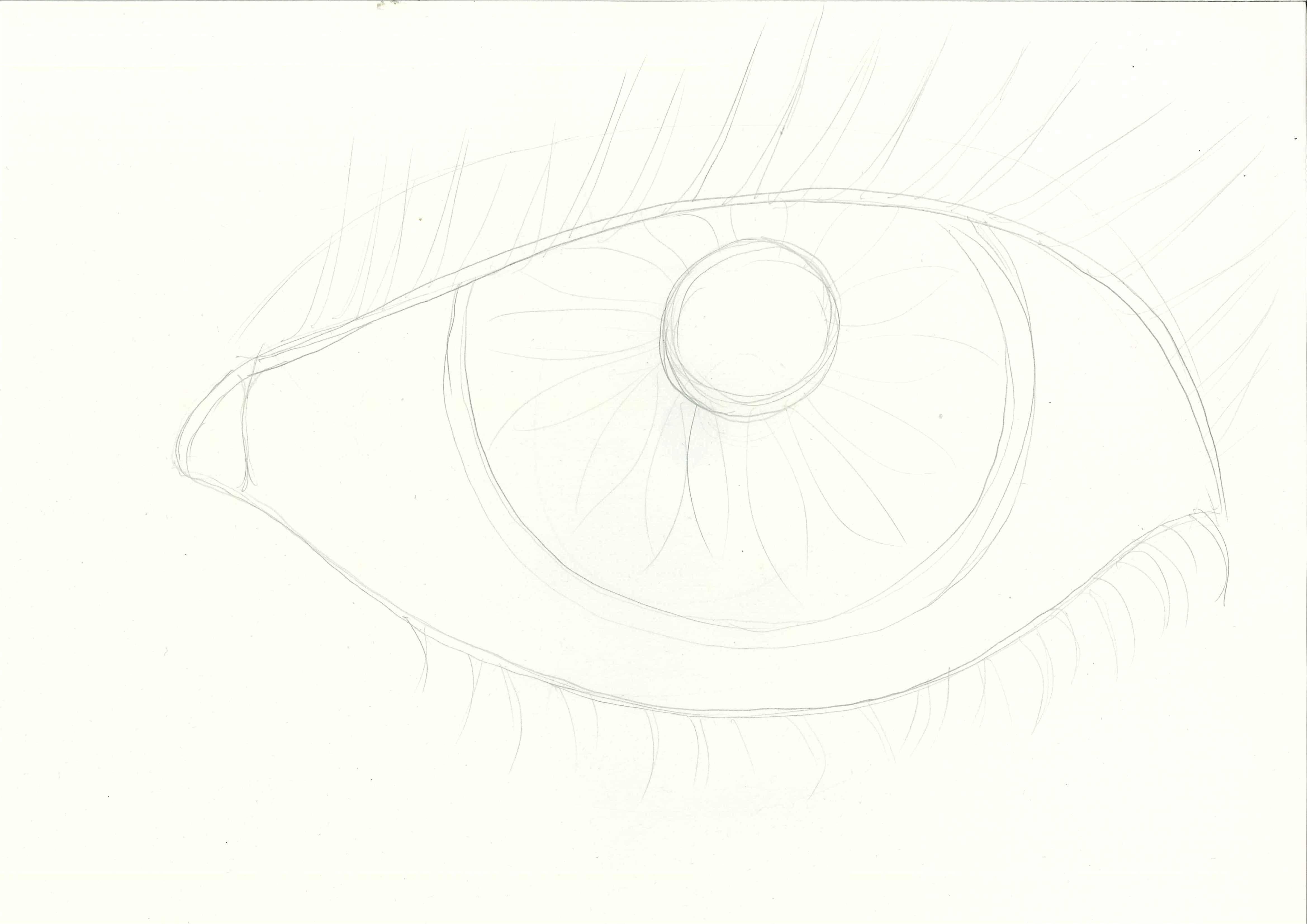 Раскраска Глаз с ресничками Скачать глаз, ресницы, зрачок.  Распечатать ,контур глаза,