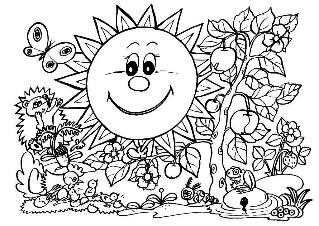 Раскраска Солнышко освещает мир Скачать природа, деревья, листья, солнце.  Распечатать ,природа,