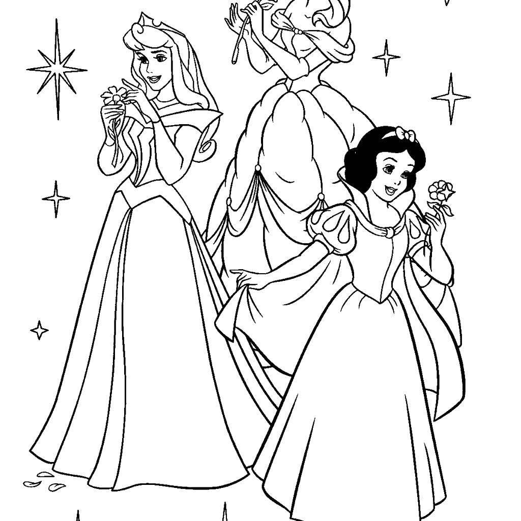 Раскраски принцессы, Раскраска Принц и принцесса Принцессы.