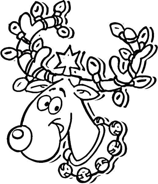 Название: Раскраска Рождественский олень. Категория: Рождество. Теги: олень, нос, рога, гирлянда.