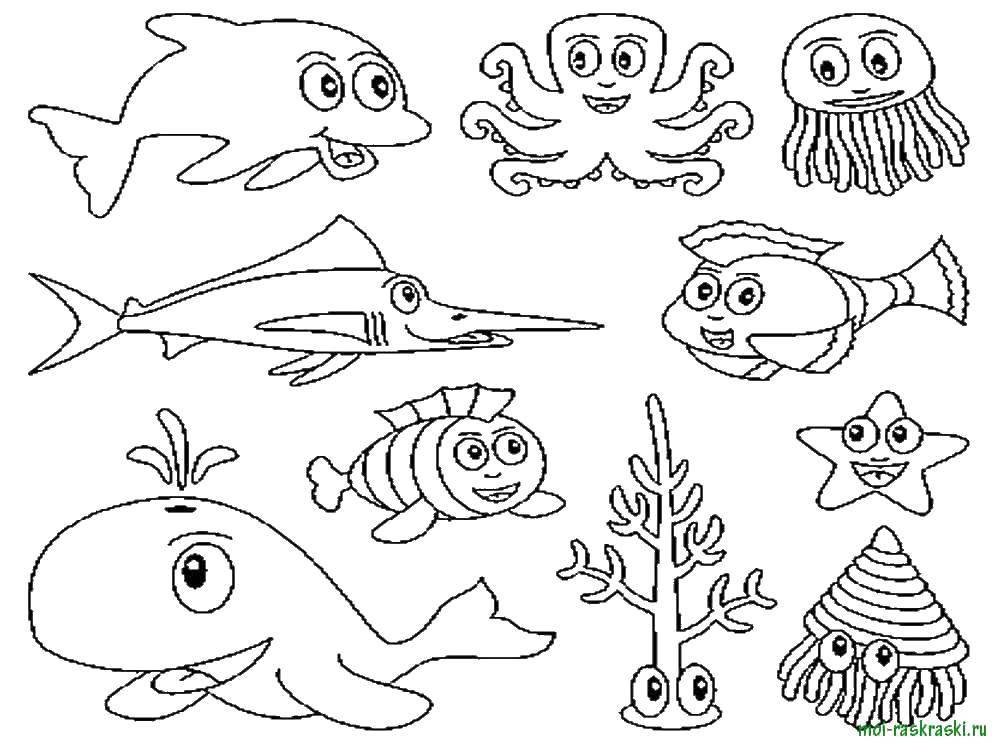 морские рыбки раскраска
