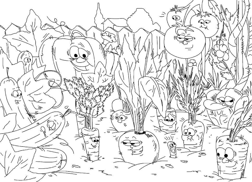 картинки раскраски на тему огород шкафы-серванты