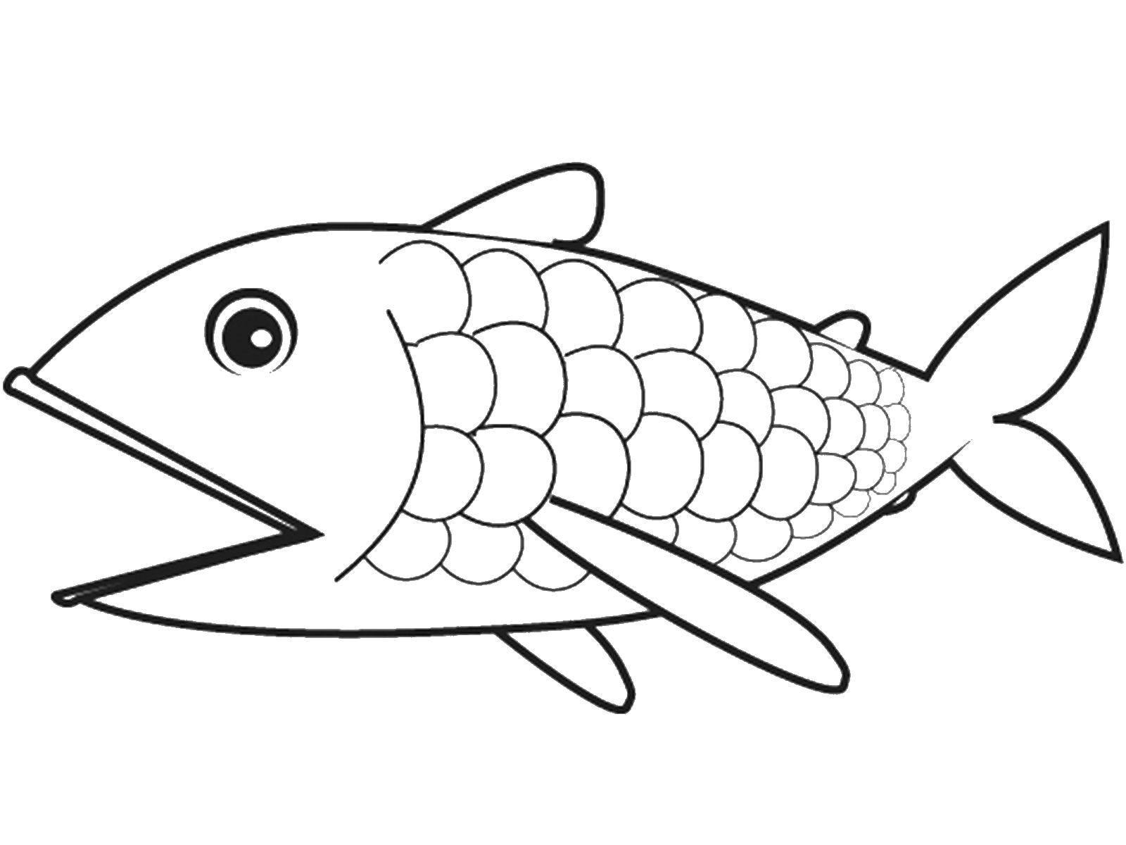 картинка рыбка распечатать должна выглядеть безупречно