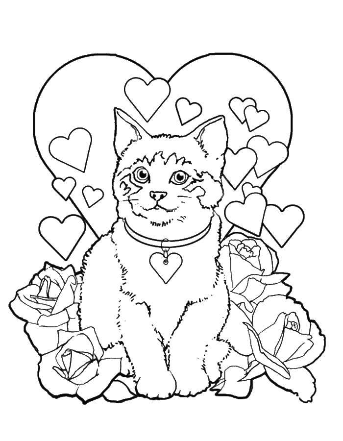 Coloring Kitty, hearts and roses. Category Valentines day. Tags:  kitty, heart, roses.