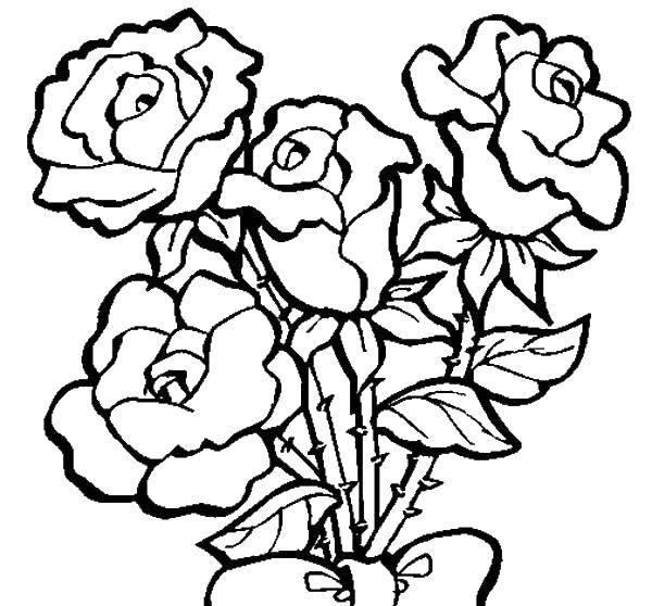 Раскраска цветы Скачать цветы, лепестки.  Распечатать