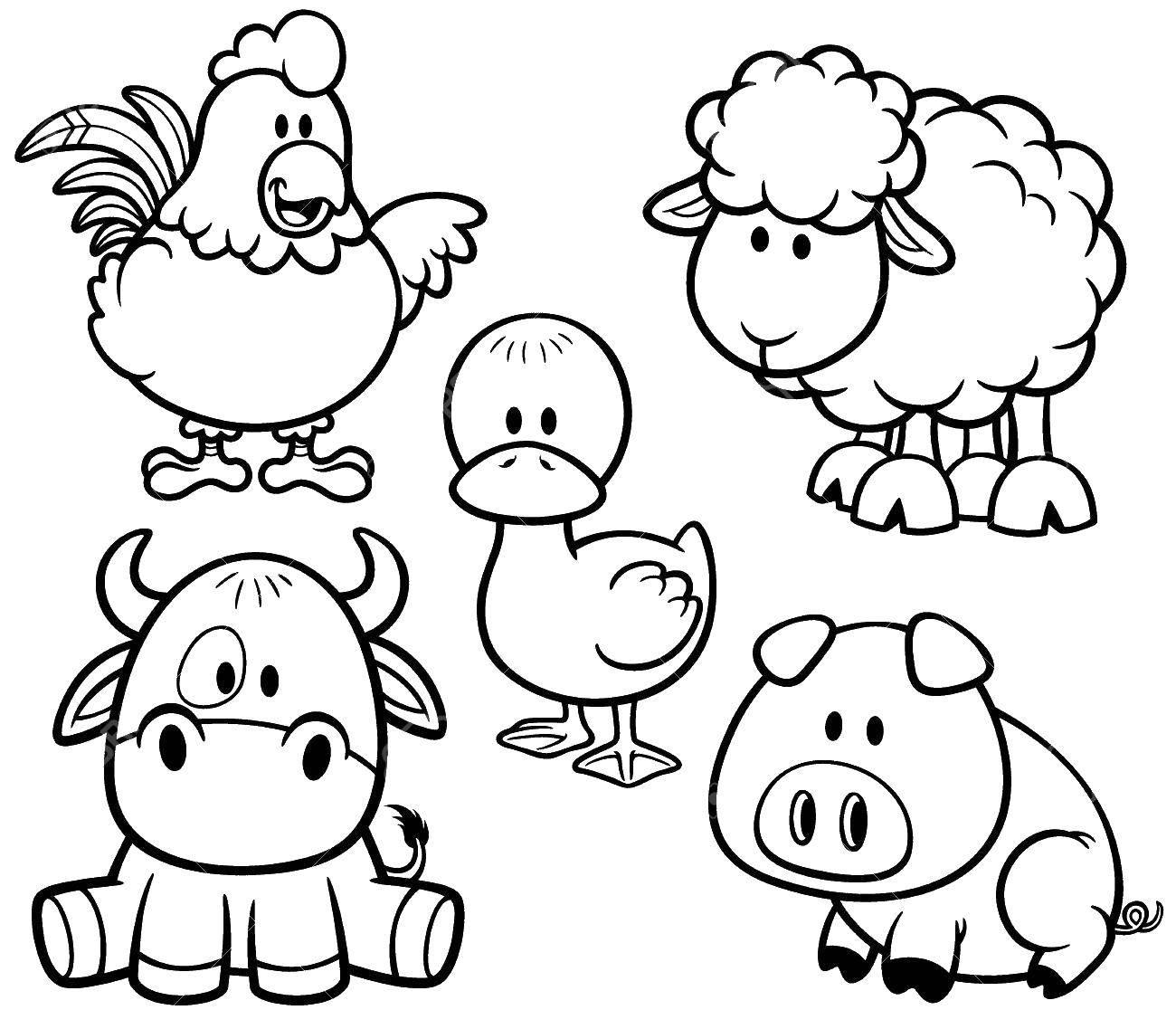 Раскраска Домашние животные Скачать ,скот, домашние животные, ферма,.  Распечатать