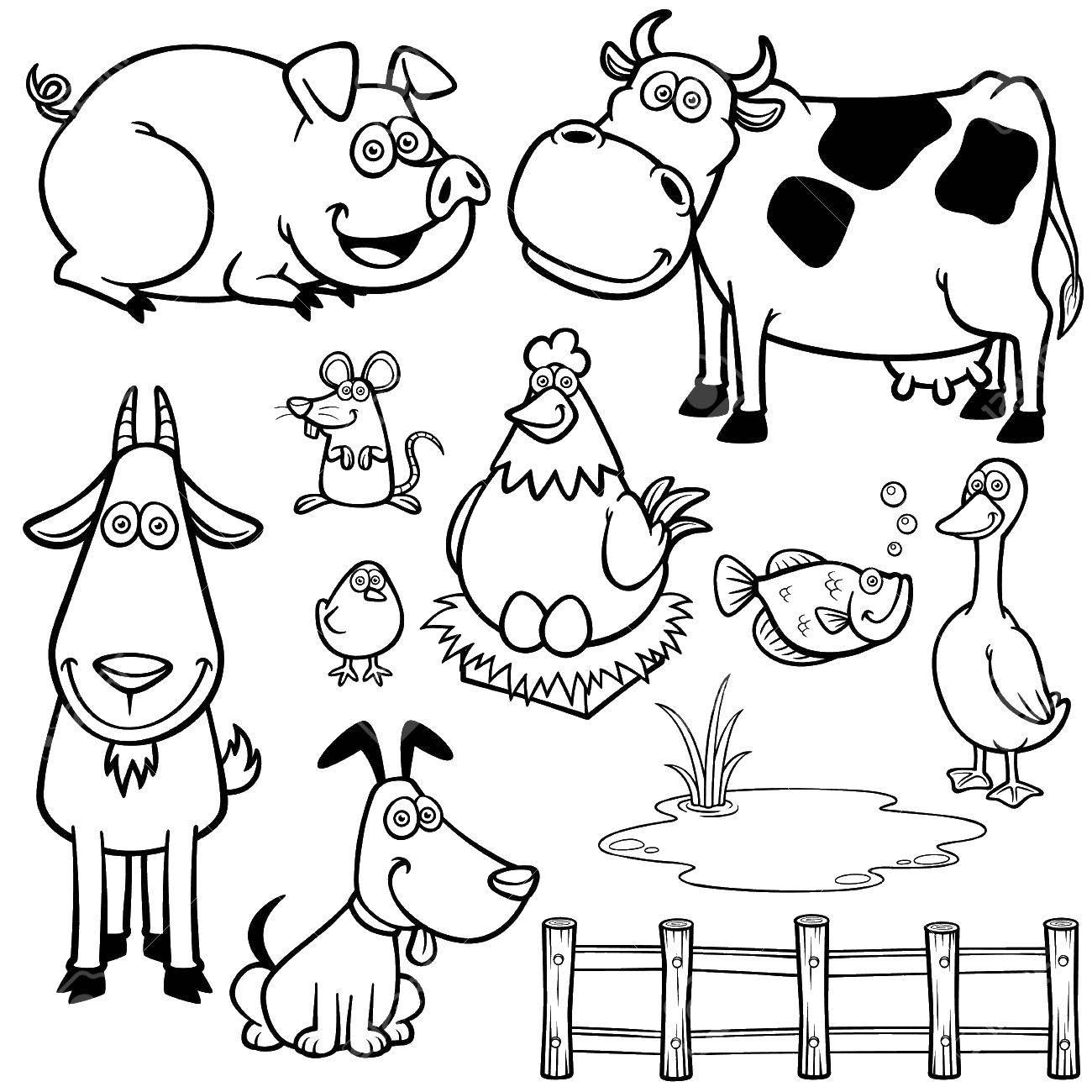 Раскраска Любимые домашние животные Скачать ,Животные,.  Распечатать