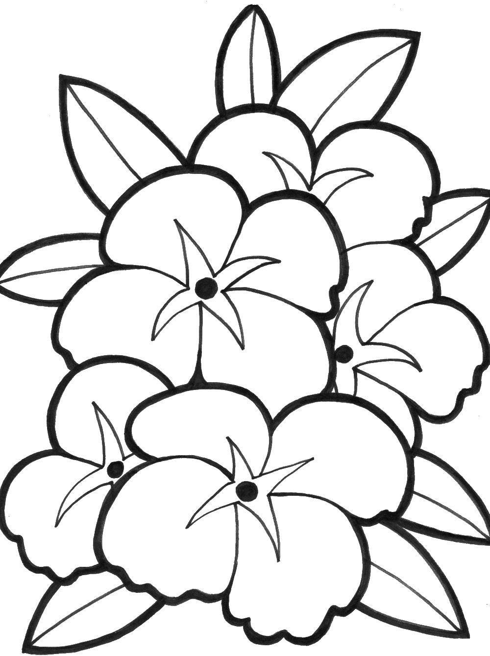 Coloring sheet flowers Download games, Tom, Ben.  Print ,coloring,
