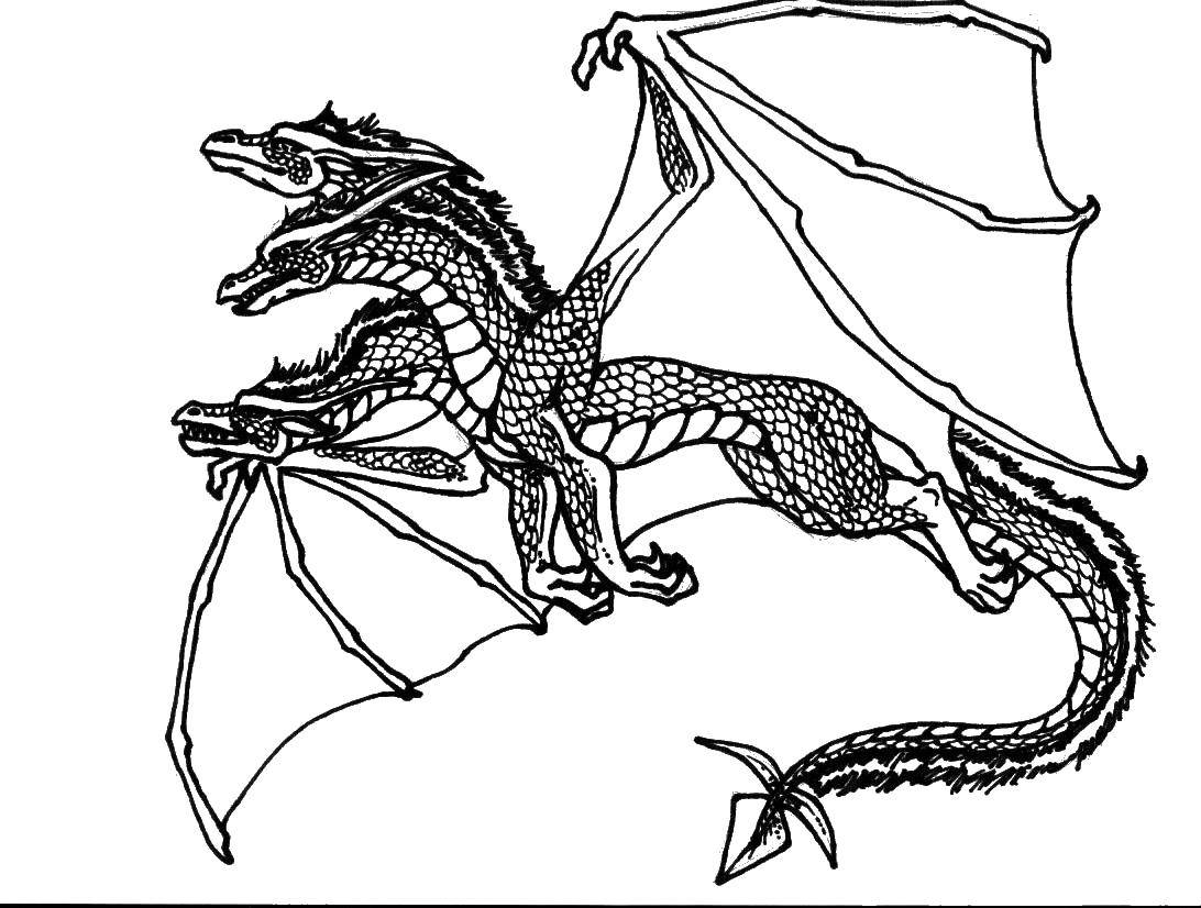 Coloring The three heads of the dragon Download Dragons,.  Print