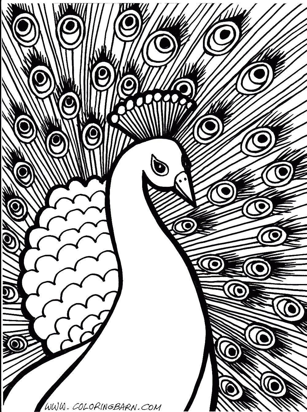 Раскраски мир, Раскраска Узорный мир павлина раскраски ...