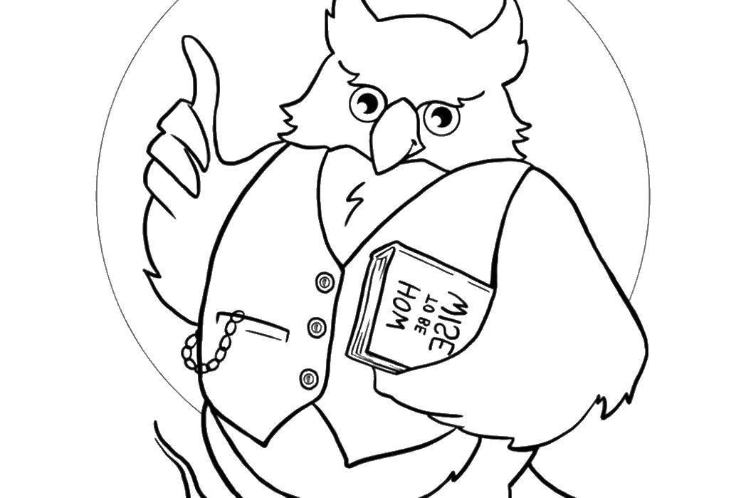 мужчина картинка мудрой совы раскраска с книжкой сорта это