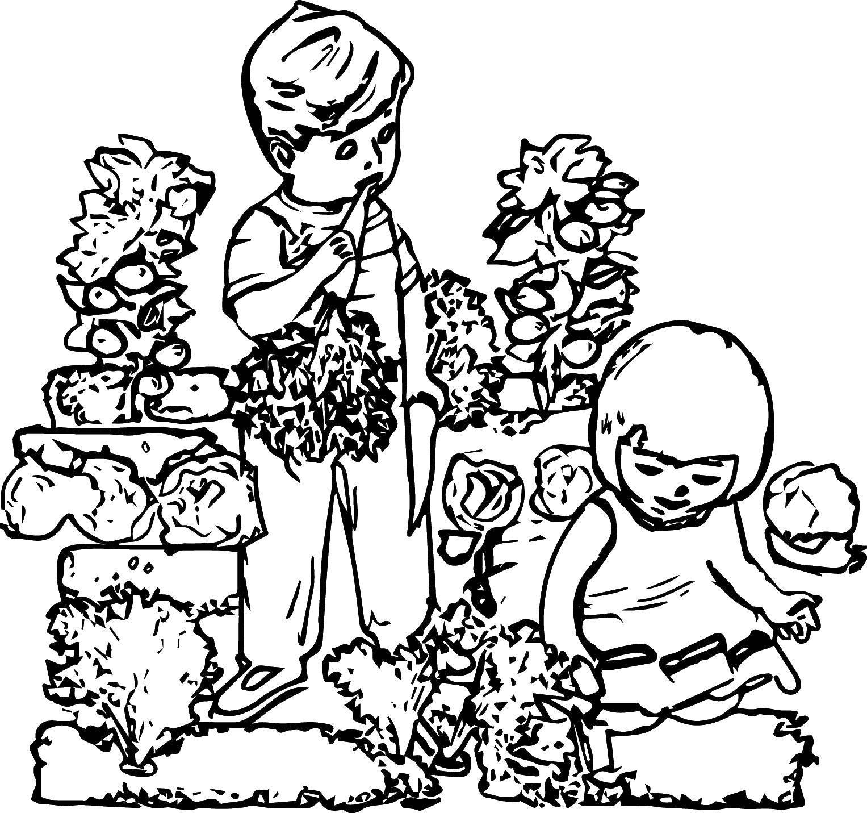 картинки раскраски на тему огород
