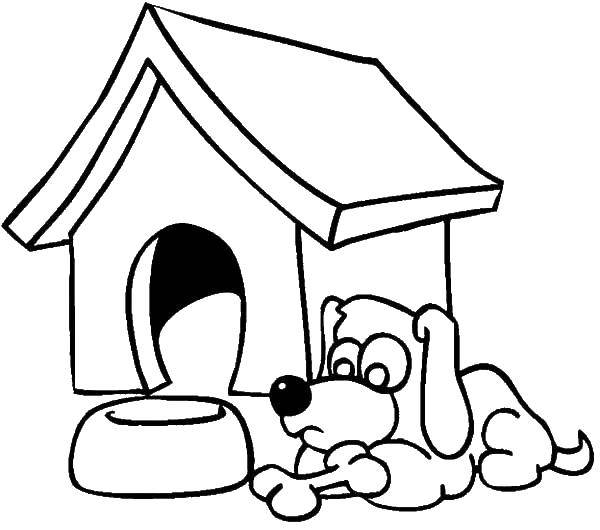 Coloring sheet Dog and kennel Download .  Print
