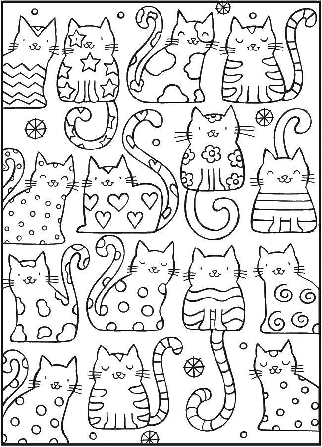Раскраска Милашки коты Скачать ,Антистресс,.  Распечатать